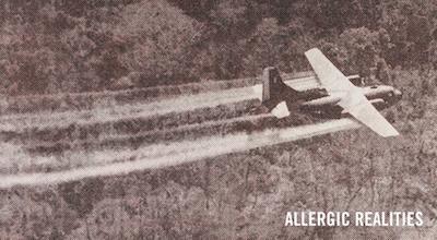 Allergic Realities