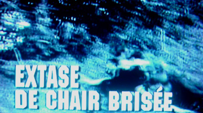 Extase De Chair Brisee